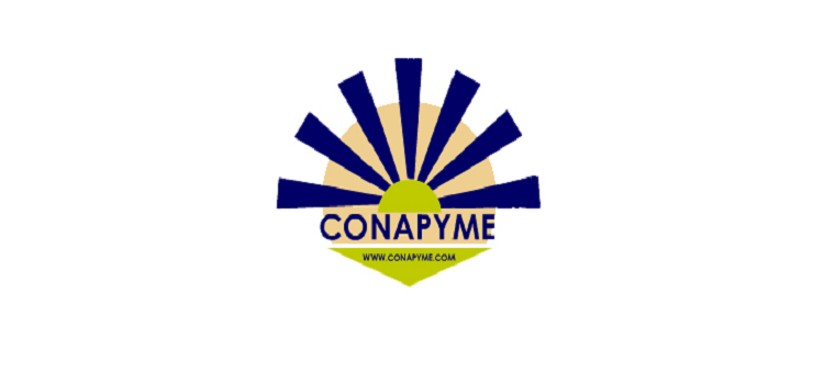 CONAPYME solicita se decrete estado de sitio IX REGIÓN